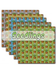 Seedlings backing paper